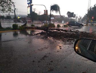 Lluvia deja afectaciones en la capital