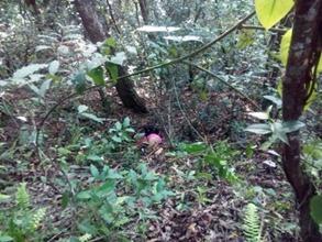 Photo of Matan a niño en Terreno de Síndico Municipal en Putla