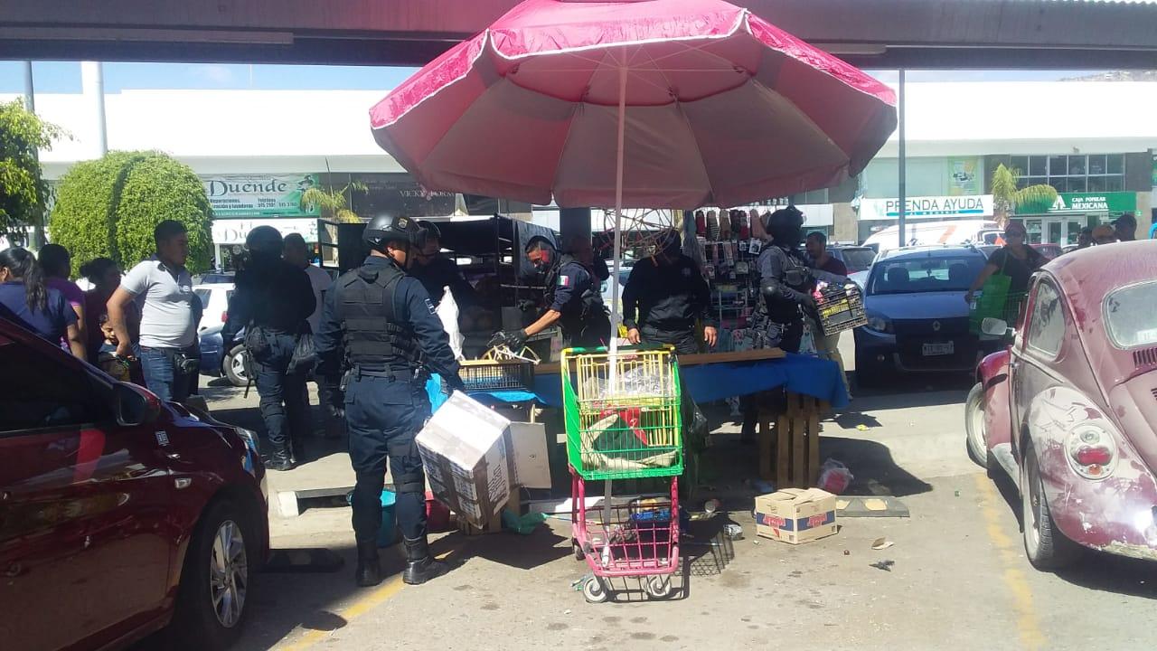 Photo of Policía Municipal asegura 80 kilogramos de pirotecnia en Santa Rosa Panzacola