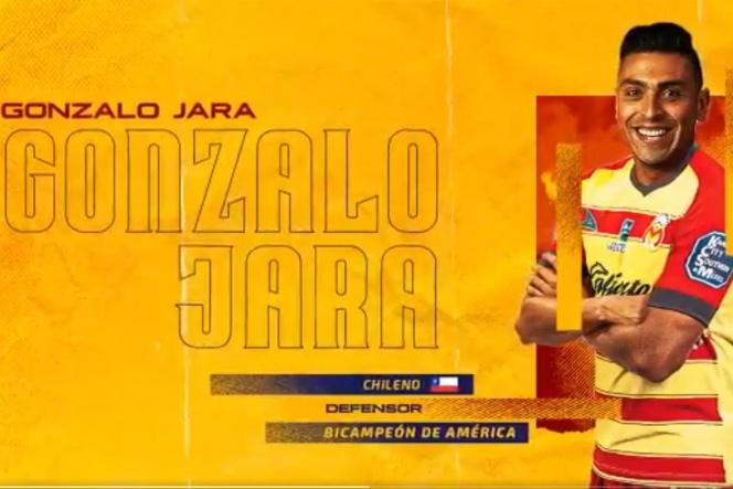 Photo of Monarcas se refuerza con un bicampeón de América