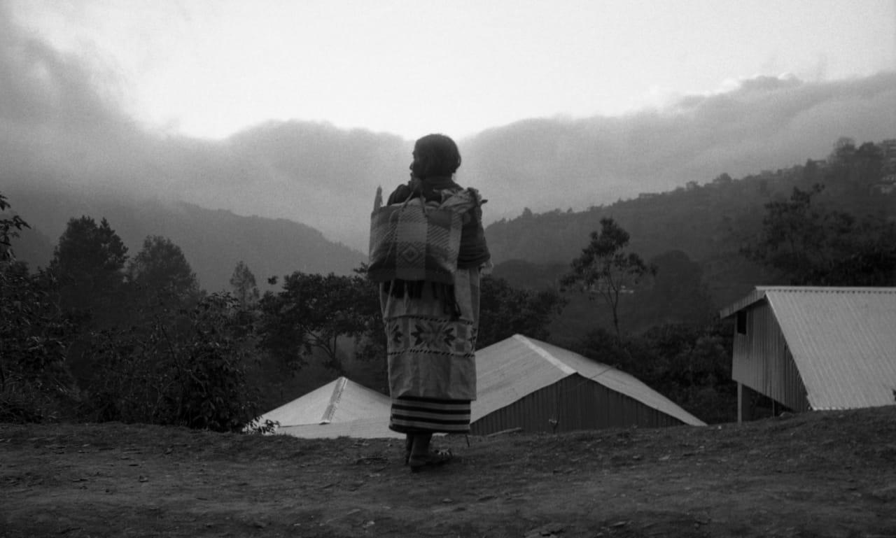 Photo of Llama diputada de la Cañada a redoblar esfuerzos ante inicio de brotes de COVID-19
