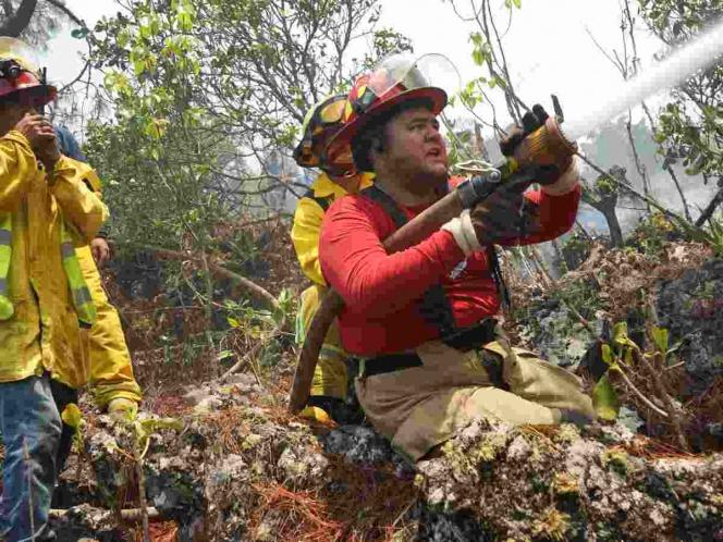 Photo of Se reportan 21 incendios forestales en 7 entidades del país