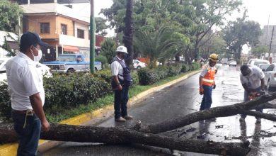 Photo of Atiende Ayuntamiento de Oaxaca 55 reportes de afectaciones por lluvia