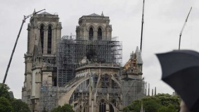 Photo of Catedral de Notre Dame se reconstruirá tal como estaba