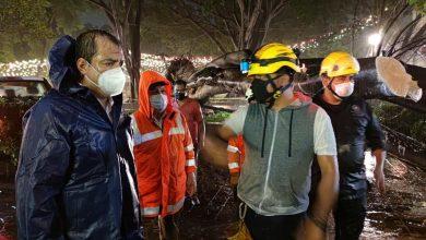 Photo of Coordina Oswaldo García labores para mitigar riesgos tras caída de árbol en el zócalo capitalino