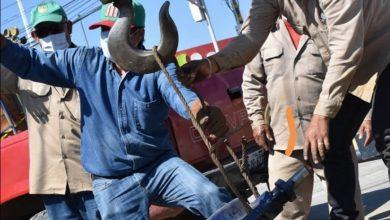 Photo of Personal de SAPAO realiza el cambio de válvula de seccionamiento en la agencia de Candiani