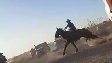 Photo of Atacan a 'polis' con piedras y palos en carrera clandestina de caballos