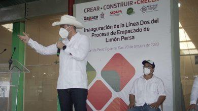 Photo of Reafirma Alejandro Murat compromiso del Gobierno de Oaxaca para el desarrollo de la Cuenca