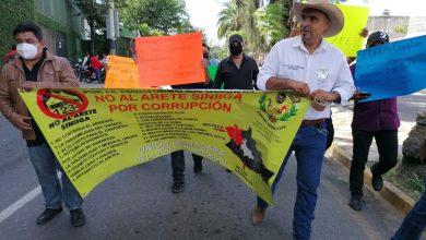 Photo of UNIÓN GANADERA DE LA VERDE ANTEQUERA DENUNCIA CORRUPCIÓN EN VENTA DE ARETES SINIIGA